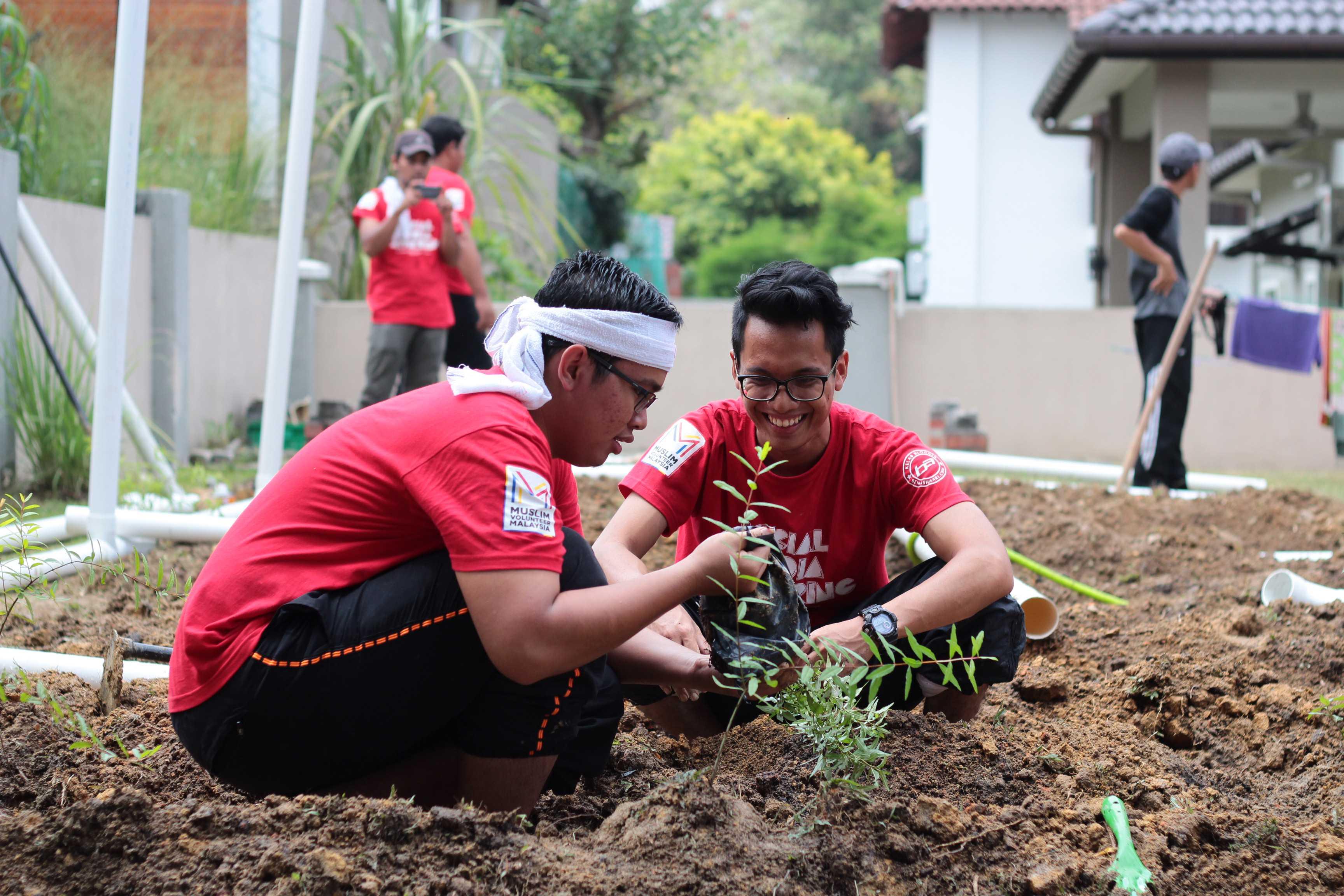 Sukarelawan sendang menanam tanaman dibatas yang telah dibina